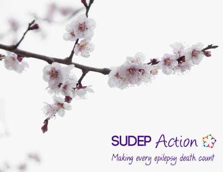 About SUDEP Action